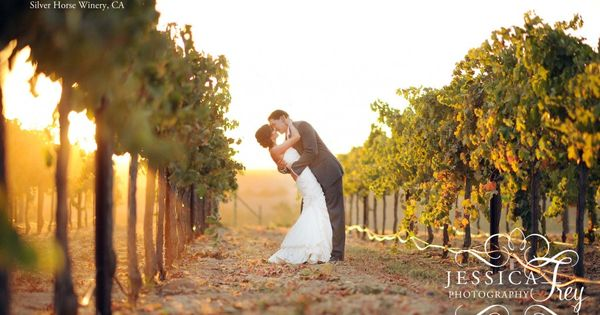 Silver Horse Winery Wedding 37 copy 1024x682 Sean & Randis Vineyard Red