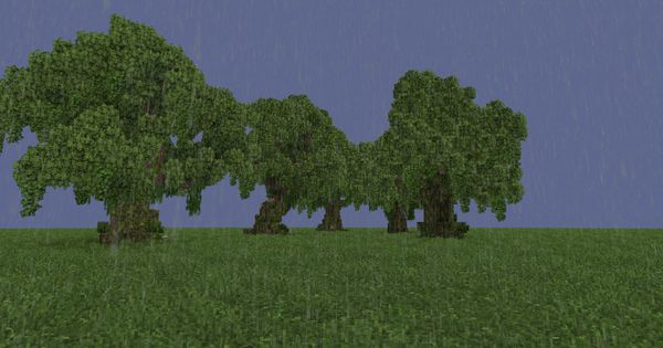 Trees Pack1 Gnarly Oaks Schems Conquest Reforged Textures Minecraft Project Tree Textures Gnarly Tree
