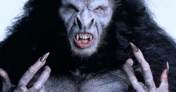 Gary Oldman ~ Werewolve/Dracula ~ Do not see me. Bram ...