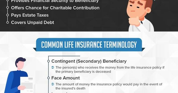 Life Insurance 101 Everything You Need To Know Infographic With Images Life Insurance Policy Infographic Health Benefits Of Life Insurance