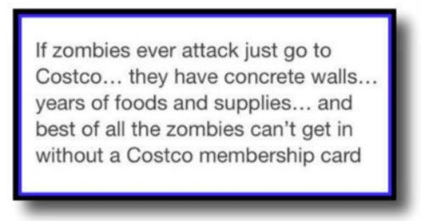 Humor Funny Pictures Funny Quotes Cute Funny Quotes Funny Quotes Zombie Walk
