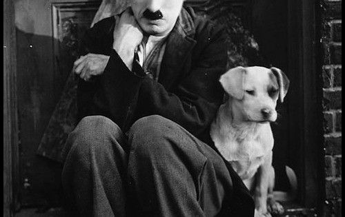 a review of a dogs life a silent film written produced and directed by charlie chaplin A dog's life (1918) is a silent film written, produced and directed by charlie chaplin this was chaplin's first film for first national films.