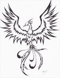 Image Result For Realistic Phoenix Bird Drawings With Images