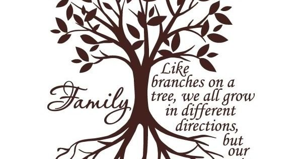Quot Like Branches On A Tree We All Grow Quot Is A Perfect Vinyl
