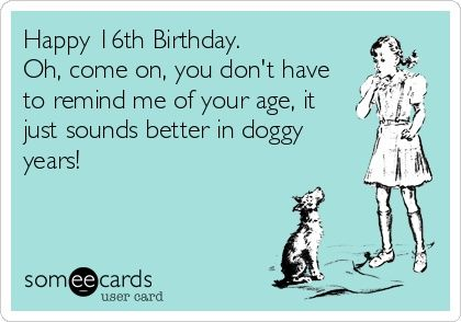 Birthday Quotes Funny Birthday Ecard Happy 16th Birthday Oh Come On You Don T Have To Remind Happy 16th Birthday Birthday Humor Birthday Quotes Funny