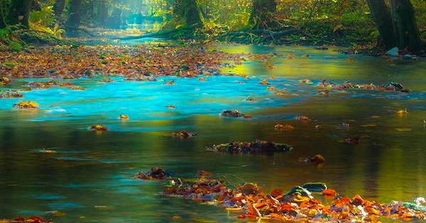 Magic light in the Spessart Mountains of Bavaria, Germany • photo: Rolf