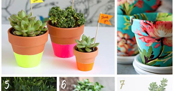 DIY pot plant ideas. Ok the Pot Plant title makes me snicker.