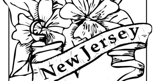 New Jersey State Flower Coloring Page Flag Coloring Pages