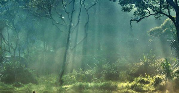 sun rays Situ Gunung National Park, Indonesia