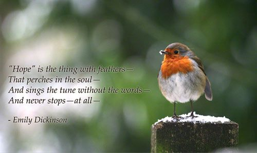 Hope Is The Thing With Feathers That Perches In The Soul And