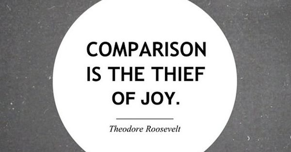 So true! Quote from Theodore Roosevelt.