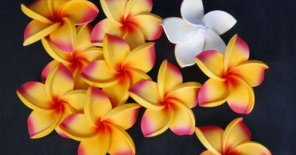 C mo hacer flores de fomi foami goma eva pinterest - Flore de goma eva ...