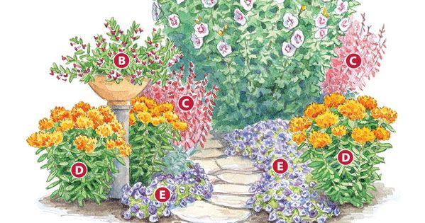 How to Plant a Hummingbird Cafe by gardengatenotes (Rose of Sharon, Batface