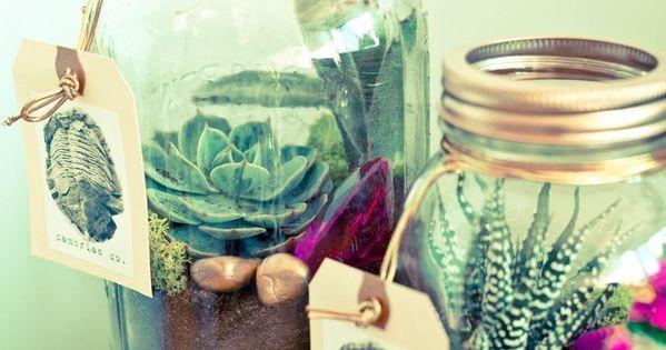 where to buy diy mason jar succulent plants room decor terrarium cicekler pinterest. Black Bedroom Furniture Sets. Home Design Ideas