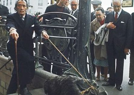 Salvador Dali walking his pet anteater like a boss.