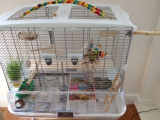 Zippy S New Cage Set With A Selection Of Natural Perches Bird Cage Covers Vision Bird Cage Pet Bird Cage
