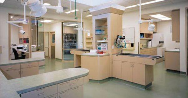 Veterinary Hospital Architect Desert Animal Hospital Palm