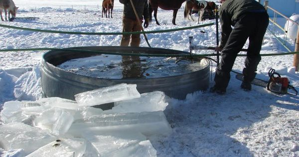 how to keep horses water from freezing in the winter
