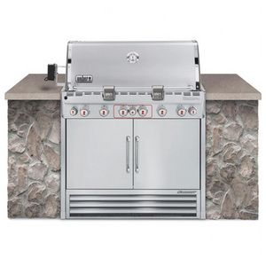 Weber Summit 6 Burner Built In Natural Gas Grill Stainless Steel