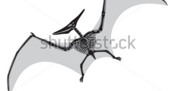 Cartoon Pterodactyl Silhouette Pterodactyl Stock Photos
