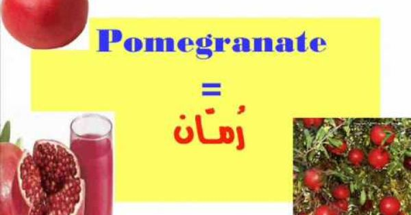 Fruits الفاكهة Arabic Lessons Youtube Songs