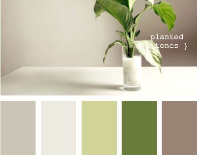 planted tones from design seeds; green and taupe or khaki color combo