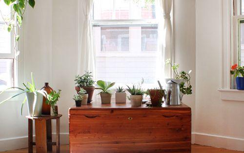 Sneak Peek Best Of Indoor Plants Now That She Has A Studio For Her Accessories Line Rennes