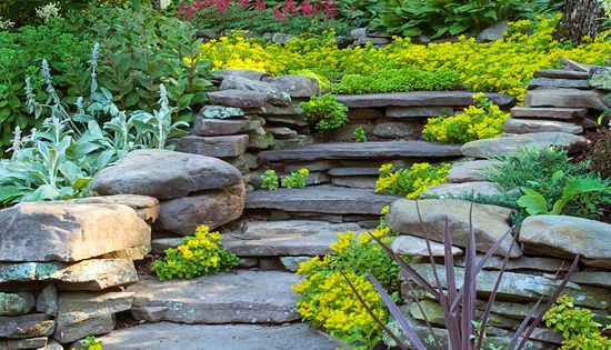 landscape ideas for sloping or steep backyards. Love this Stone steps and