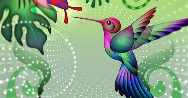 Hummingbird in the Garden by Whale Man via Flickr
