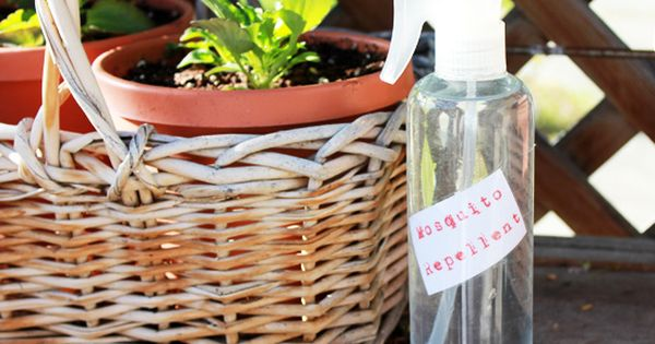 All natural bug spray: 2 cups witch hazel 15 drops citronella essential
