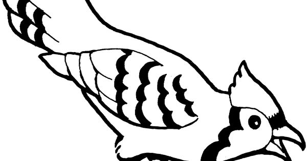 Blue Jay Bird Coloring Page Free Printable Coloring Pages Bird Coloring Pages Blue Jay Bird Tree Coloring Page