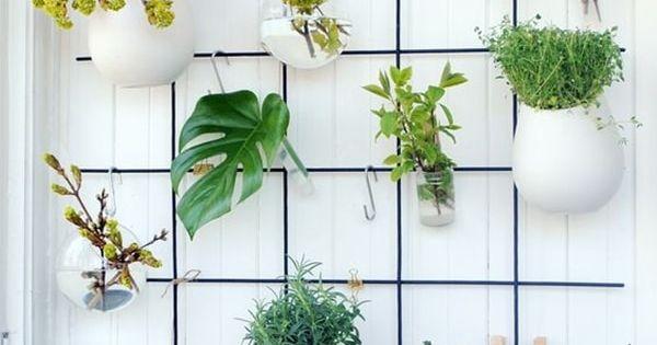 Ideas originales para decorar interiores con plantas - Plantas para decorar interiores ...