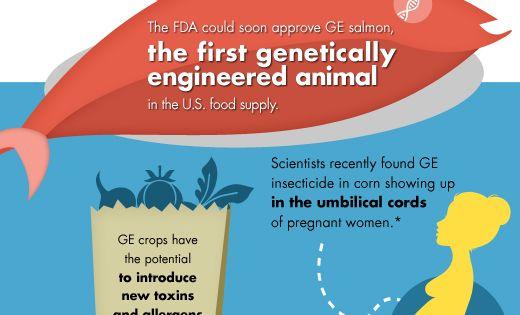 Label GMOs!