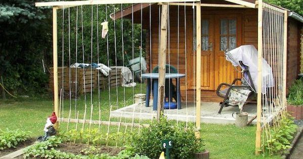 bohnengestell selber bauen feuerbohne stangenbohnen und. Black Bedroom Furniture Sets. Home Design Ideas