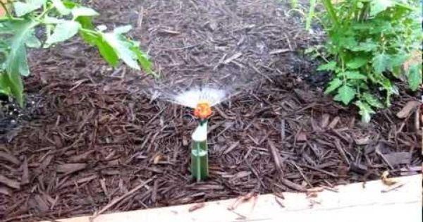 Backyard Garden Irrigation : Micro sprinkler system youtube wembley landscape ideas