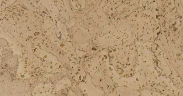 Durodesign Cork Tiles Bleach White Kitchen Pinterest