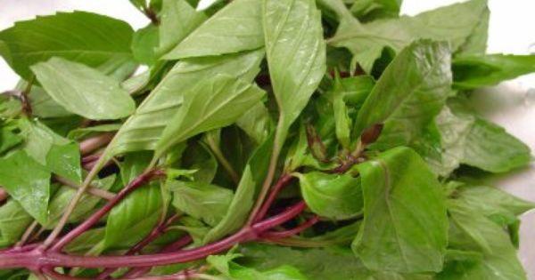 Ghim trên Vietnamese herbs & Spices
