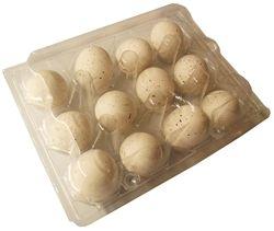 12 Pack Of Rite Farm Products 12 Quail Egg Clear Poly Cartons Quail Eggs Quail Storing Eggs