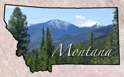 20 Fun Interesting Facts About Montana With Images Montana