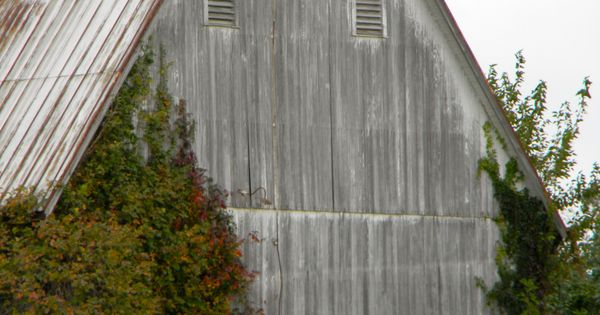 Faded White Barn