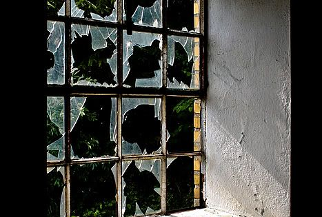 Frosted contact paper becomes broken glass windows. - Halloween decoration idea