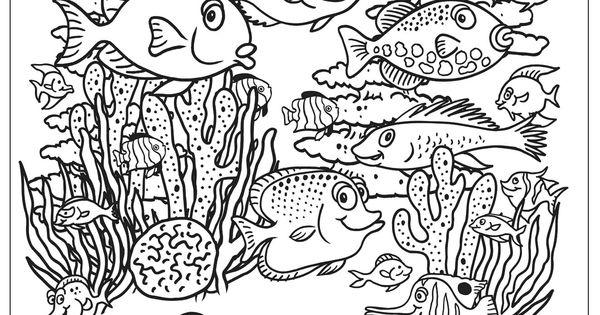 Aquarium coloring page Kids Coloring Book Pinterest
