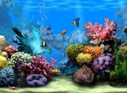 Sfondo acquario desktop animato