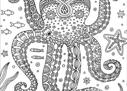 Octopus Colorful Meditations