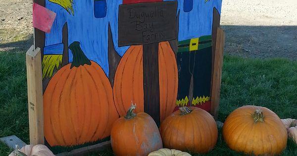 Dugualla Farm Pumpkin Patch and corn maze