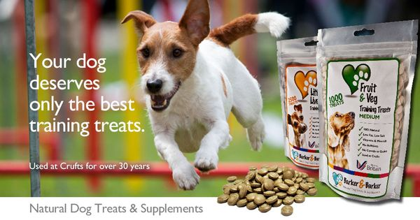 Best Inexpensive Dog Suppliments
