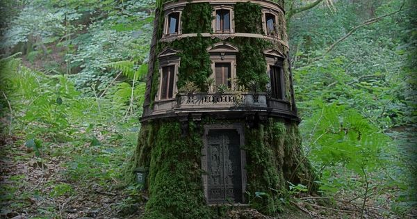 Treehouse, Lake District, England - best tree fort EVER!