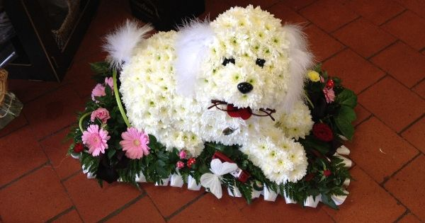 dog flower arrangement instructions