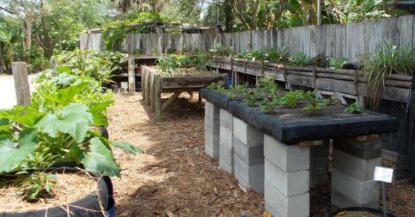 Echo Alternative Gardening Methods Waist High Gardening Backyard