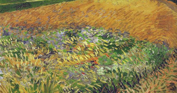 Vincent Van Gogh Wheat Field 1888 Van Gogh Museum Amsterdam Netherlands Van Gogh Up Close At Philadelphia Museum Of Art Museu Van Gogh Van Gogh Pinturas E Pinturas Paisagens
